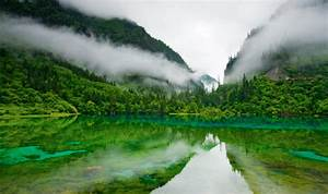 Hd Nature Images Wallpaper Of Natures Organic Fresh Air