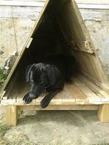 10 diy comfortable dog house made of pallet maison en With geothermal dog house