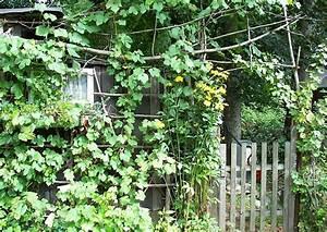 Garten Verschönern Ohne Geld Gartenideen F R Wenig Geld G Nstig Zum