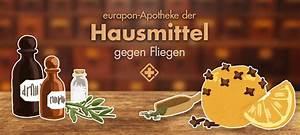 Hausmittel Gegen Fliegen : hausmittel gegen fliegen eurapons apotheke der hausmittel ~ Articles-book.com Haus und Dekorationen