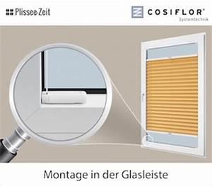 Plissee Rollos Zum Klemmen : plissee rollo zum klemmen haus ideen ~ Bigdaddyawards.com Haus und Dekorationen
