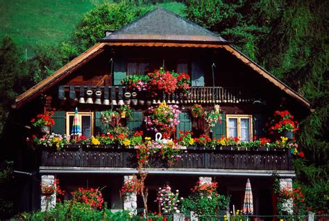 images  home   home swiss chalet