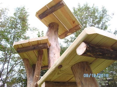 Outdoor Cat Trees Uk-lowest Prices Guaranteed