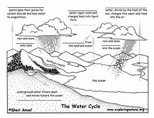 Water Cycle - Fill In The Blank Quiz