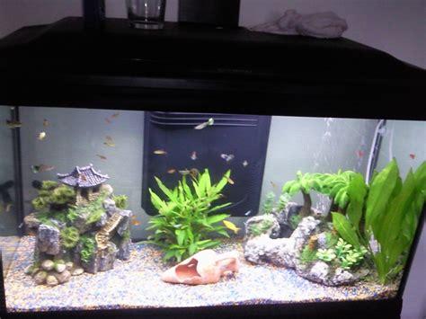 aquarium eau douce 120 litres