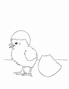 baby chick coloring pages - easter coloring pages make and takes