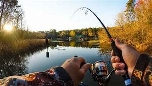 Download 1920x1080 fishing, pond, nature, gopro, fishing ...