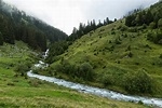 Water quality of Swiss rivers criticised by WWF - SWI ...