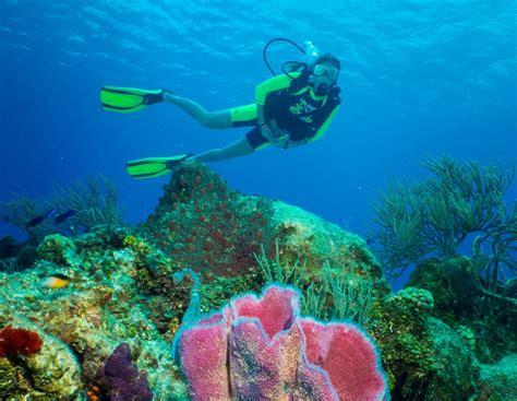 How To Scuba Dive - cozumel two tank scuba diving cozumel cruise excursions