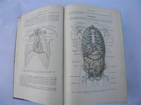 vintage medical book grays anatomy human body