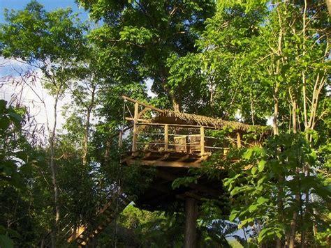chambre hote guadeloupe chambre d 39 hôtes guadeloupe vacances cabane arbre