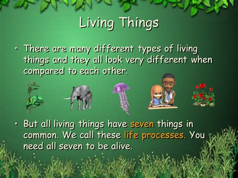 Let's Look At Living Things