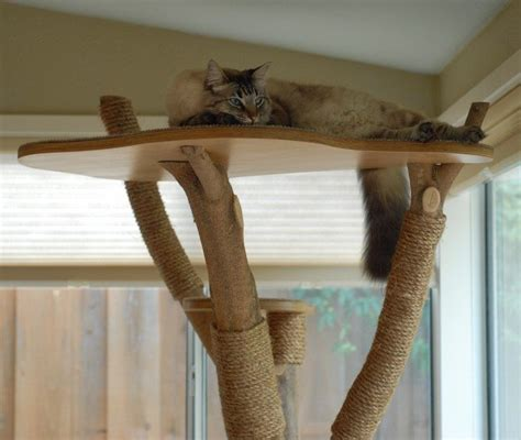 turn   tree   classy cat tower diy projects