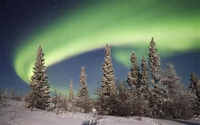 Forest Aurora Winter Borealis Wallpapers Desktop Landscape