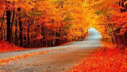 Fall Wallpapers Autumn Ecran Fond Backgrounds Nature