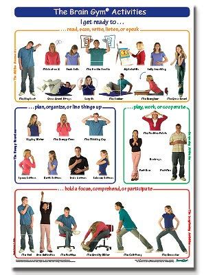 brain gym exercises for preschoolers the brain 174 activities poster teen large brain 556