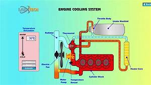 15  How Does The Cooling System Work On A Car You Will
