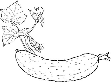 Vegetable Coloring Pages For Childrens Printable For Free