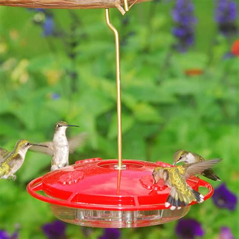 duncraftcom aspects hummzinger ultra hummingbird feeder