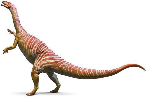 Plateosaurus Plateosaurus Facts Dk Find Out