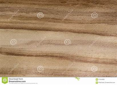 Wood Veneer Exotic Grain Texture Background Hardwood