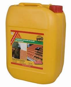 Traitement Anti Mousse : traitement anti mousse sika stop mousse pro bidon de 20l ~ Farleysfitness.com Idées de Décoration