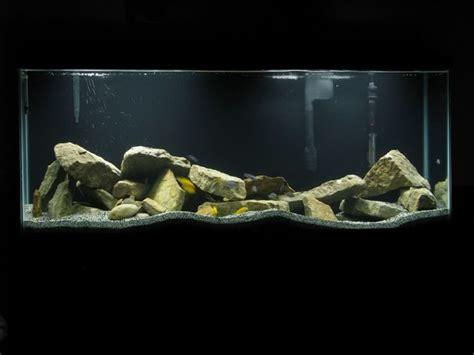 20 best images about aquarium set up ideas on pinterest