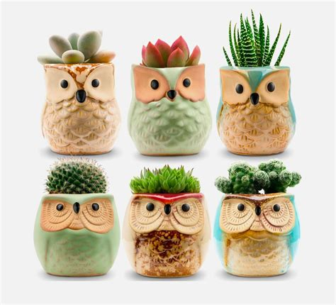 Product Of The Week An Interactive Owl Shaped Security by Product Of The Week Ceramic Owl Succulent Planters