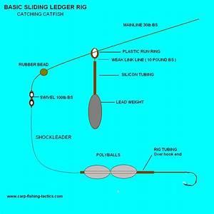 Ledgering Rigs For Coarse Fishing
