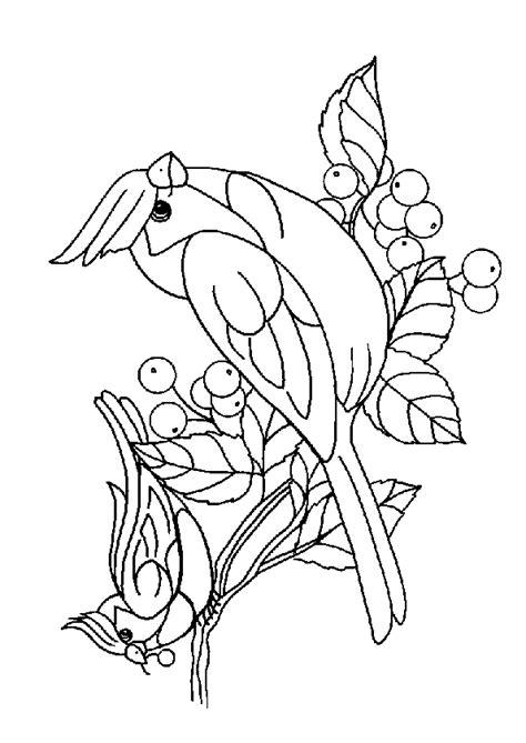 Escher Vogel Kleurplaat by Kleurplaat Vogels 5757 Kleurplaten