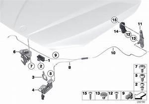 2014 Bmw X1 Expanding Rivet  Scr  Manually  Hatch - 51168197908