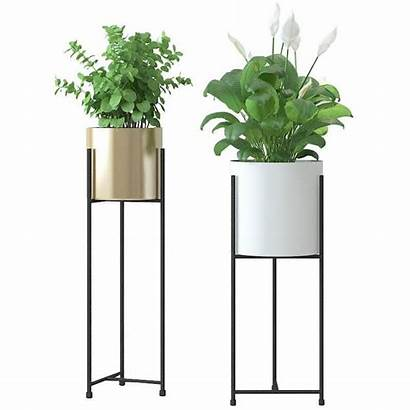 Tall Plant Stand Pot Classy Stands Plants