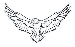 Flying Eagle Bird Drawing