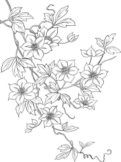 flower3664.jpg (1199×1600) | Floral embroidery patterns