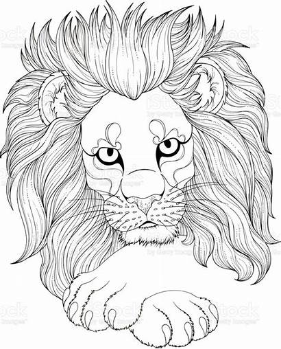 Lion Coloring Adult Drawing Animal Monochrome Istockphoto