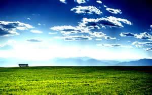 Green Blue Sky Nature Beautiful