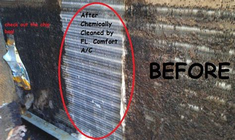how to test for mold in air evaporator coils floridacomfortac com