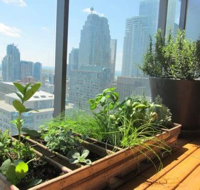 Kräutergarten Anlegen Balkon by Kr 228 Utergarten Anlegen Was Darf Auf Ihrem Balkon Nicht