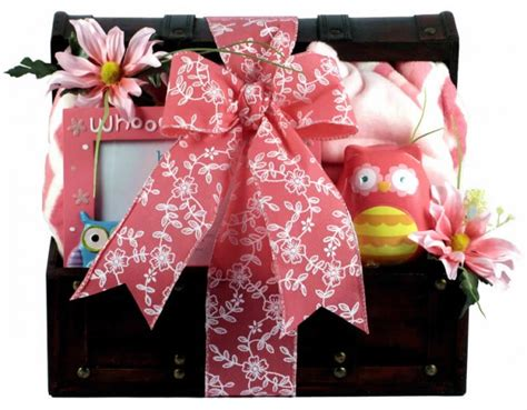 Whooo's A Cutie, Baby Girl Gift Basket