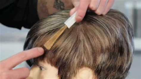 how to put hair style how to cover gray with highlights of light brown 9242