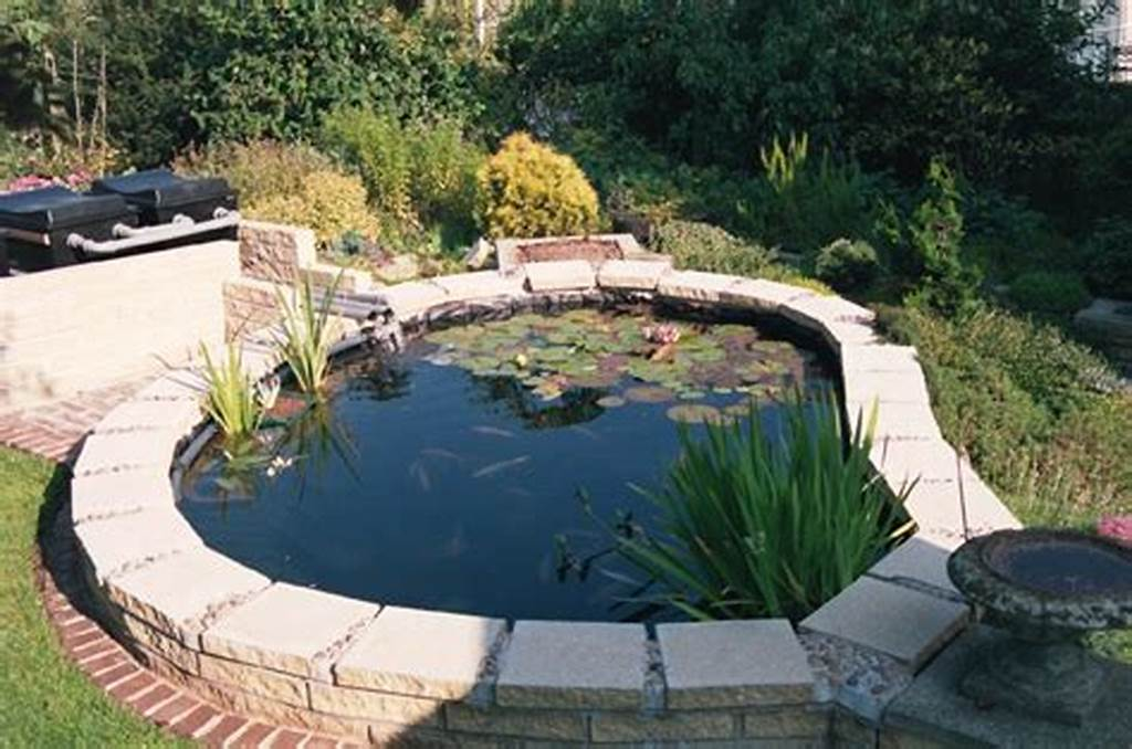 #Outdoor #Tetra #Pond #Filter #House #Exterior #And #Interior