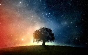 space, Trees, Grass, Stars Wallpapers HD / Desktop and ...
