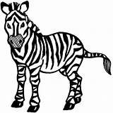 Zebra Coloring Pages Printable Zebras Drawing Cartoon Sheet Ausmalbilder Realistic Sampler Clipart Clip Clipartmag Getcolorings Desktop Kostenlos Pictur Getcoloringpages Getdrawings sketch template