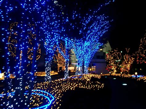 christmas lights wallpaper 1024x768 50787