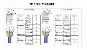 Cat5e Wiring Diagram 568b