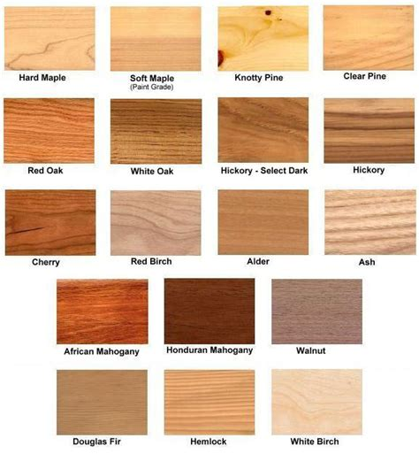 what type of wood is best for kitchen cabinets choices and options cabinets and more