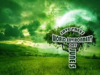 Environment Trees Save Wallpapers Environmental Desktop Px
