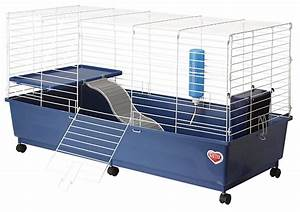 Best Indoor Guinea Pig Cage Models Reviewed With Tips