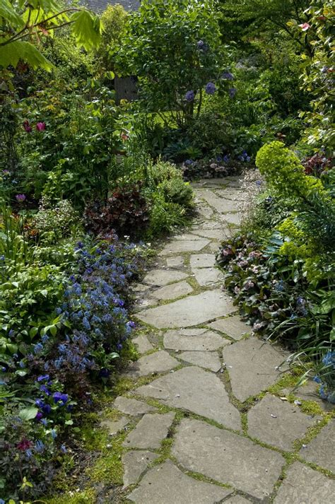 flagstone paths botanical infill stretching urban boundaries with lush layers of plants