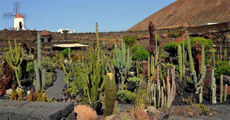 camino de letras  syra jardin de cactus en lanzarote